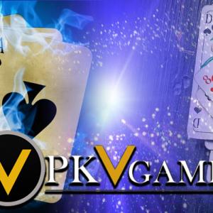 Kendala Main Poker Online bagi Pemain Pemula